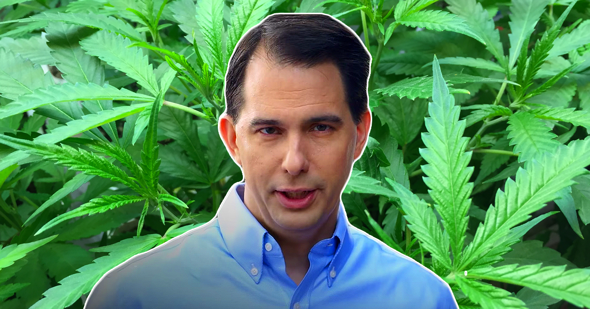 scott walker in front of marijuana