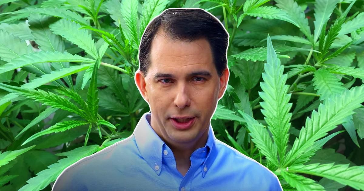 scott walker in front of marijuana